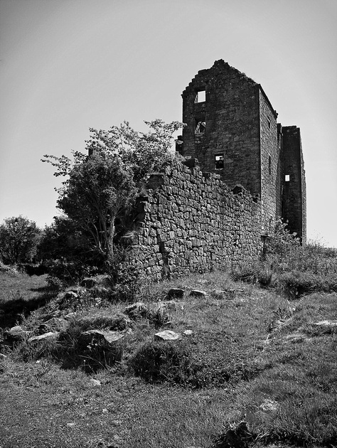 Torwood Castle