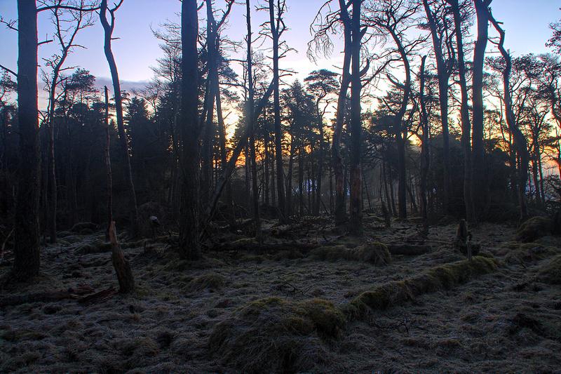 Chris Bowness Landscape   Wild camp on Saline Hill