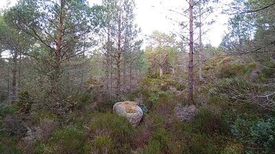 Difficult camping terrain
