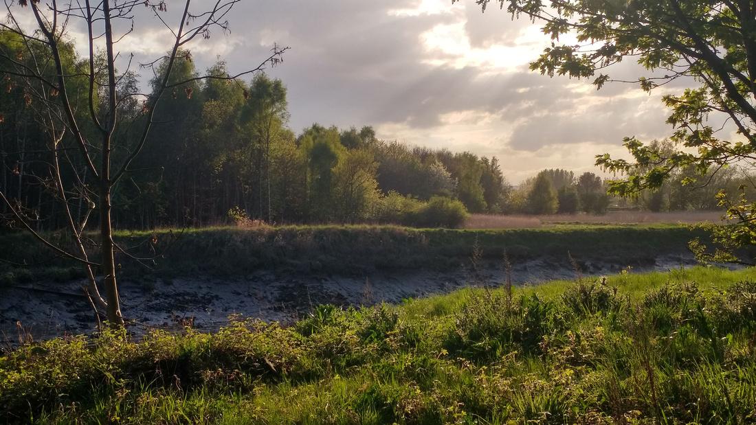 Chris Bowness Landscape Blog