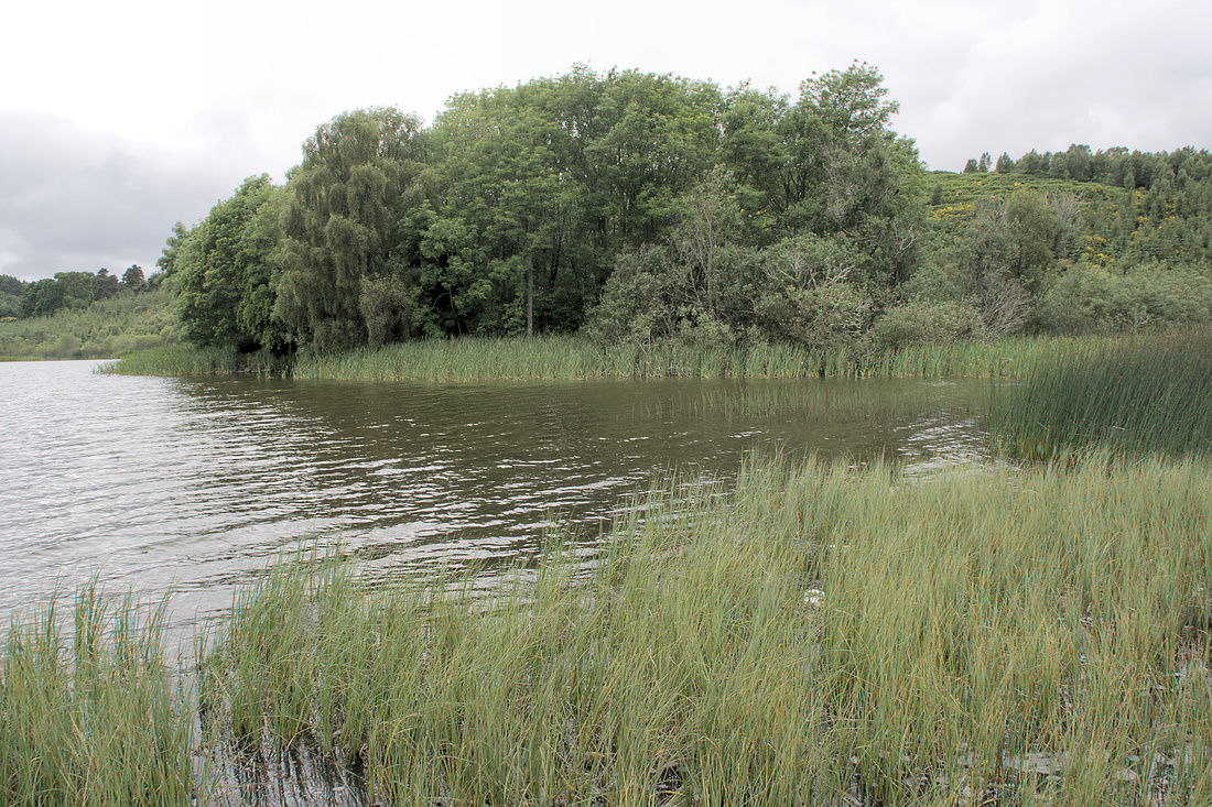 Loch Kinellan Crannog