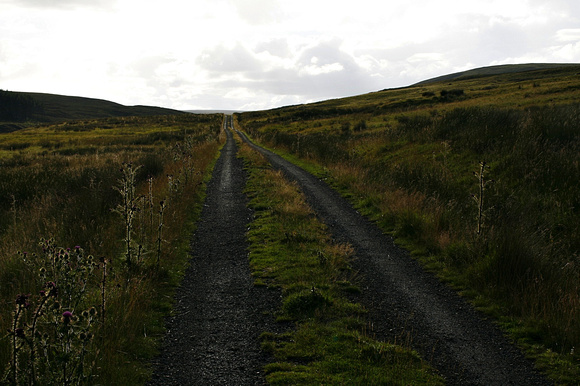 The Way Ahead