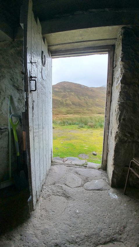 Looking out the door