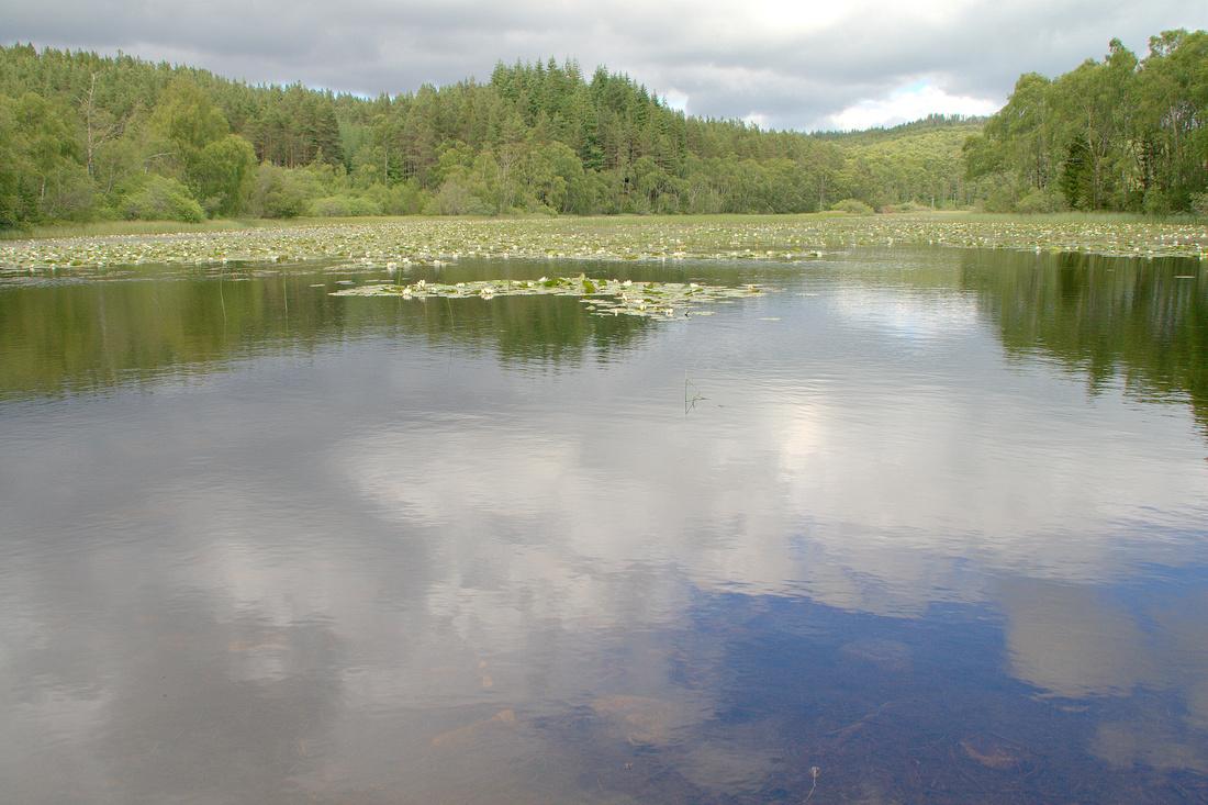 Loch Na Craan
